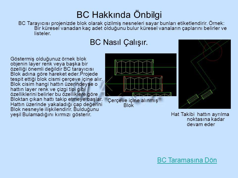 Göstermiş olduğunuz örnek blok objenin layer renk veya başka bir özelliği önemli değildir BC tarayıcısı Blok adına göre hareket eder.Projede tespit et