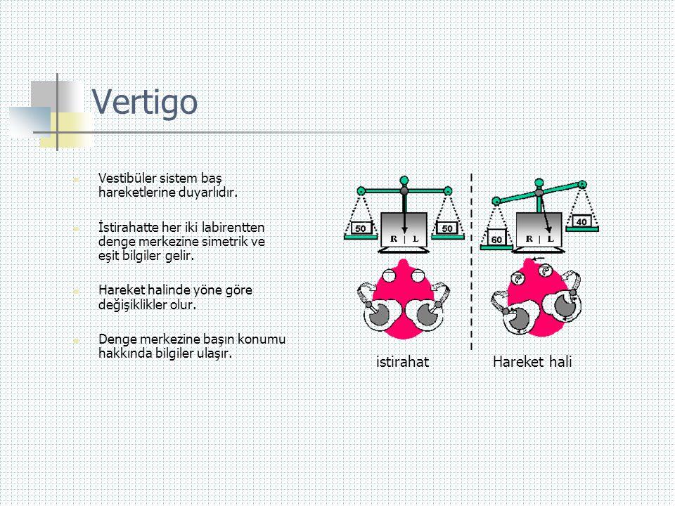 Vertigo  Vestibüler sistem baş hareketlerine duyarlıdır.  İstirahatte her iki labirentten denge merkezine simetrik ve eşit bilgiler gelir.  Hareket