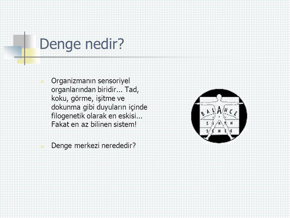 Vertigo  Vertigo vestibüler sistem hastalıklarının belirtisidir.