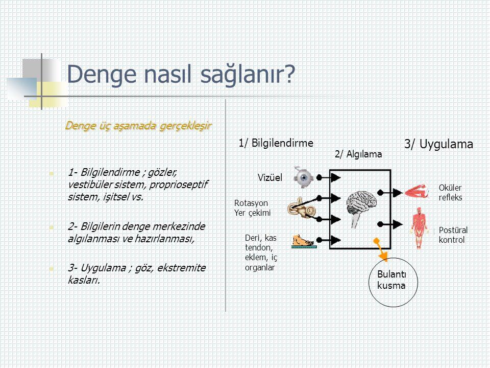Denge nasıl sağlanır? Denge üç aşamada gerçekleşir  1- Bilgilendirme ; gözler, vestibüler sistem, proprioseptif sistem, işitsel vs.  2- Bilgilerin d