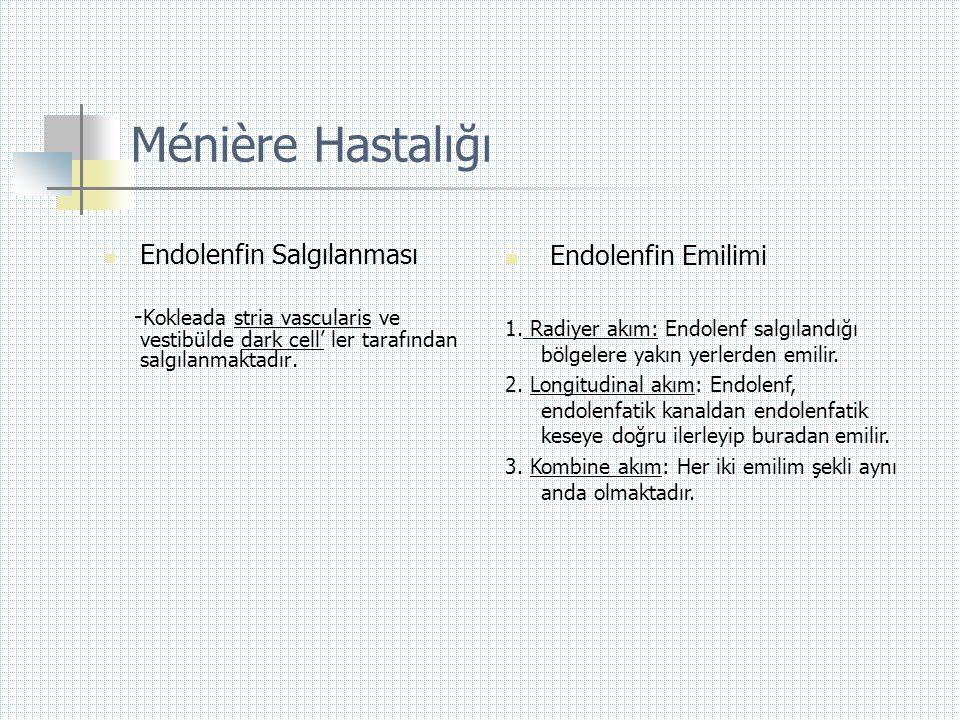Ménière Hastalığı  Endolenfin Salgılanması - Kokleada stria vascularis ve vestibülde dark cell' ler tarafından salgılanmaktadır.  Endolenfin Emilimi