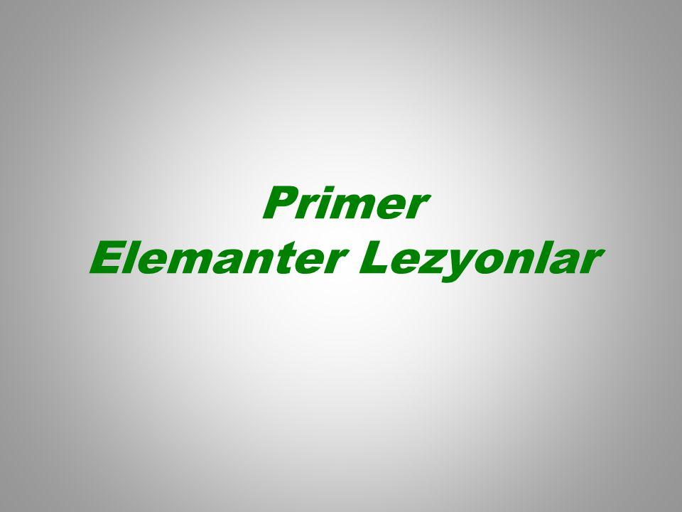 Primer Elemanter Lezyonlar