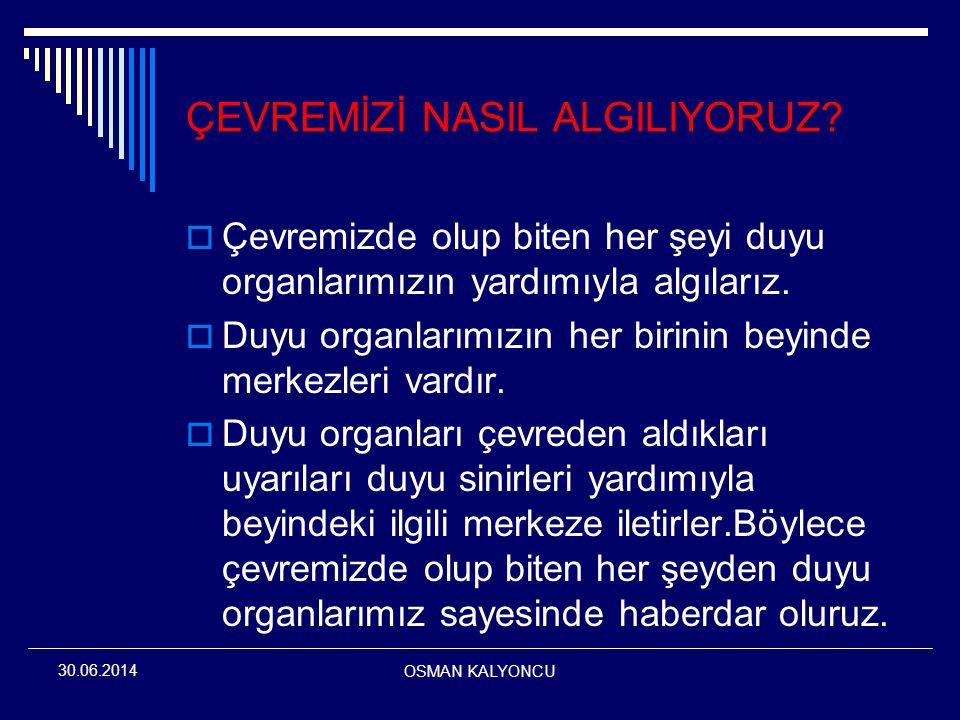 OSMAN KALYONCU 30.06.2014 SORU:30 Boğaz enfeksiyonu görülen kişilerde, aynı zamanda ortakulak iltihabının da yaygın görülmesi aşağıdakilerden hangisi ile açıklanabilir.