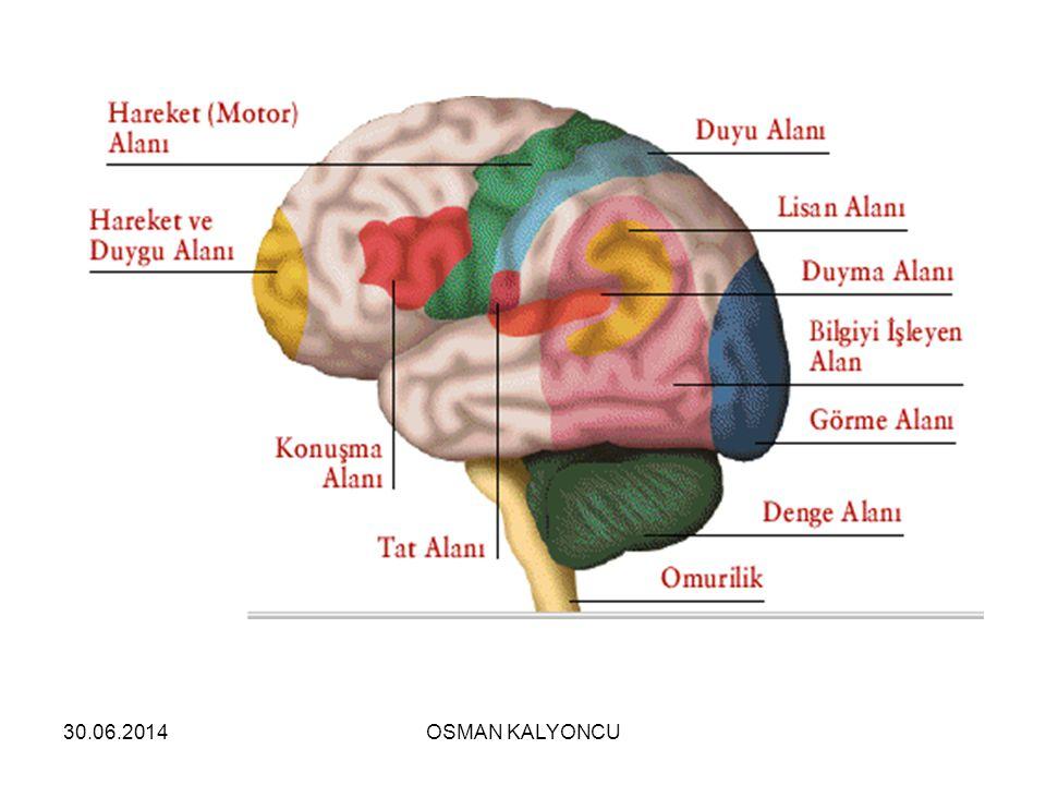 30.06.2014OSMAN KALYONCU  Beş çeşit duyu organı vardır.  Göz  Kulak  Burun  Dil  Deri
