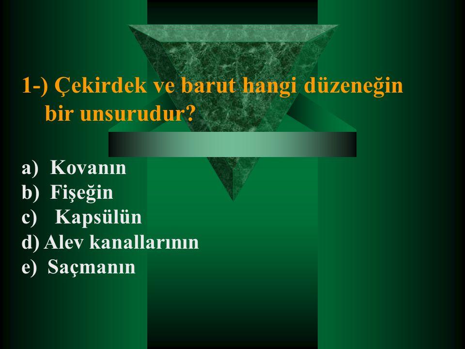 1-) Çekirdek ve barut hangi düzeneğin bir unsurudur? a) Kovanın b) Fişeğin c) Kapsülün d) Alev kanallarının e) Saçmanın