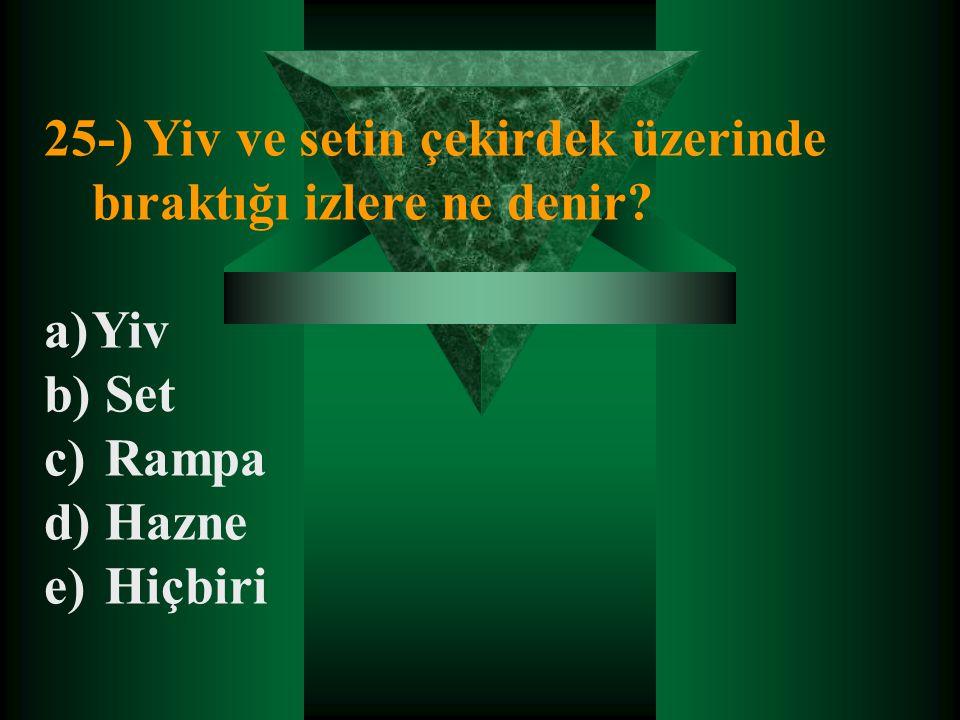 25-) Yiv ve setin çekirdek üzerinde bıraktığı izlere ne denir? a)Yiv b) Set c) Rampa d) Hazne e) Hiçbiri