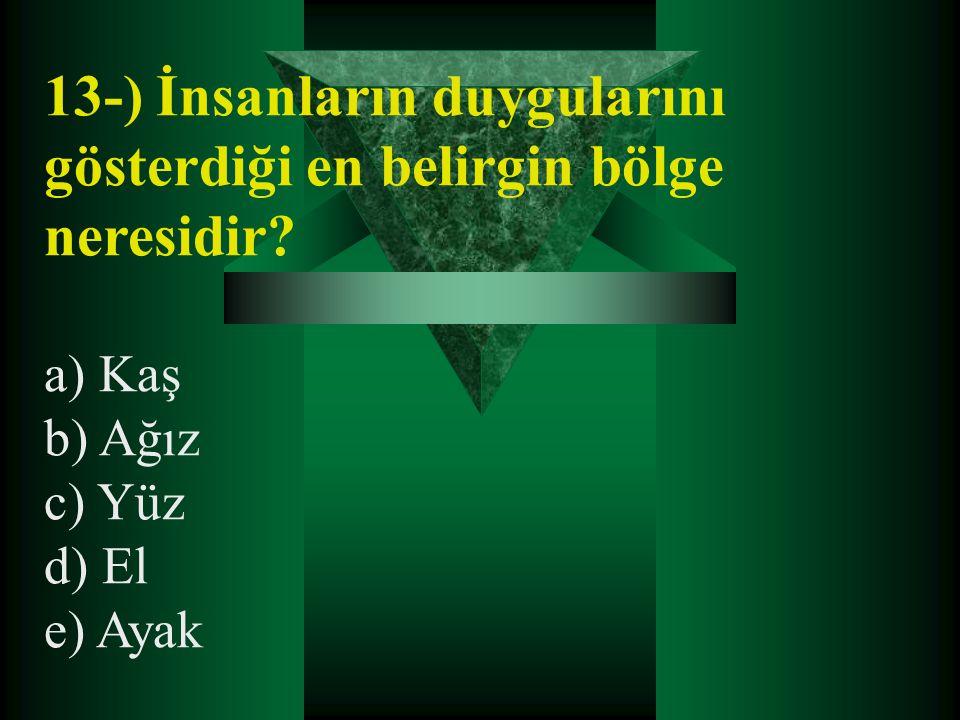 13-) İnsanların duygularını gösterdiği en belirgin bölge neresidir? a) Kaş b) Ağız c) Yüz d) El e) Ayak