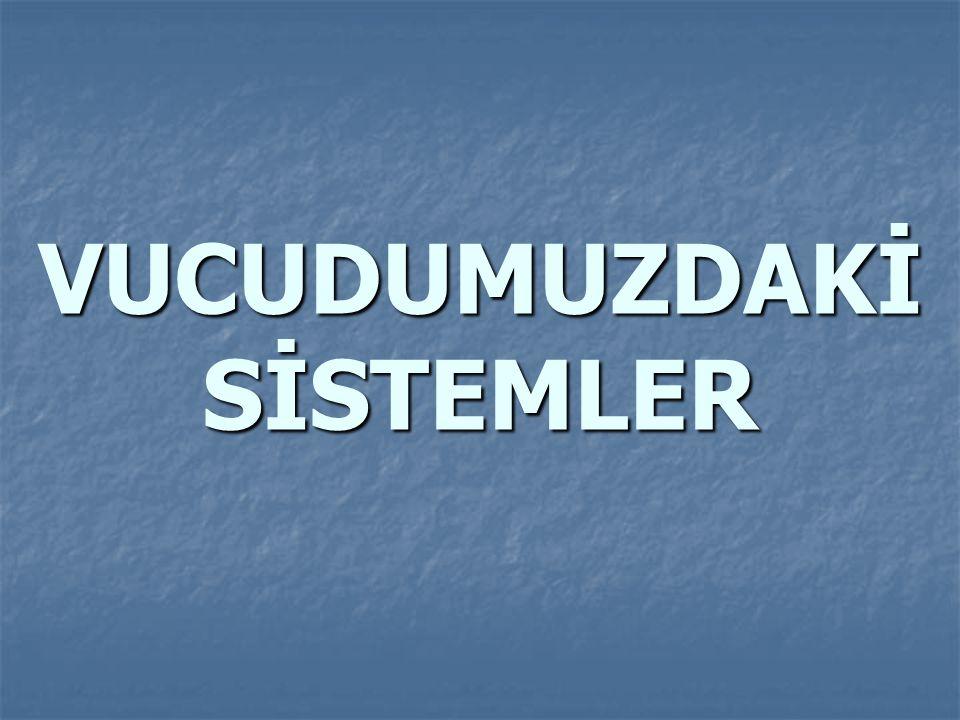  D.Mide :  Sindirim sisteminin en genişlemiş organıdır.