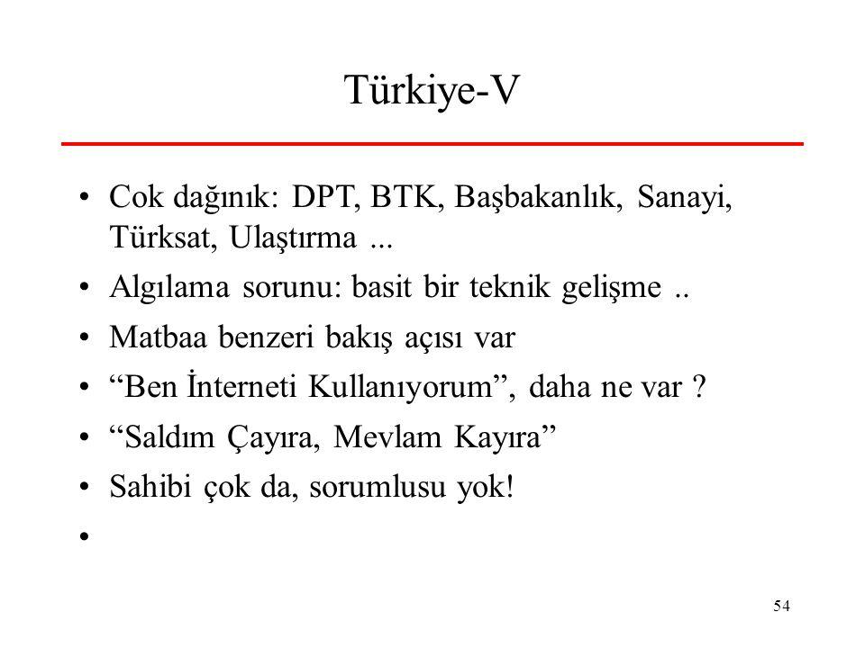 54 Türkiye-V •Cok dağınık: DPT, BTK, Başbakanlık, Sanayi, Türksat, Ulaştırma... •Algılama sorunu: basit bir teknik gelişme.. •Matbaa benzeri bakış açı