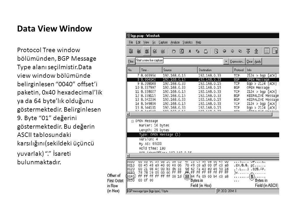 Data View Window Protocol Tree window bölümünden, BGP Message Type alanı seçilmistir.Data view window bölümünde belirginlesen 0040 offset'i paketin, 0x40 hexadecimal'lik ya da 64 byte'lık olduğunu göstermektedir.
