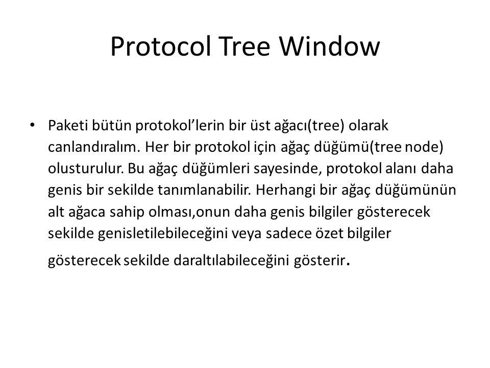 Protocol Tree Window • Paketi bütün protokol'lerin bir üst ağacı(tree) olarak canlandıralım.