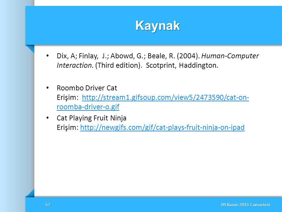 Kaynak • Dix, A; Finlay, J.; Abowd, G.; Beale, R. (2004). Human-Computer Interaction. (Third edition). Scotprint, Haddington. • Roombo Driver Cat Eriş