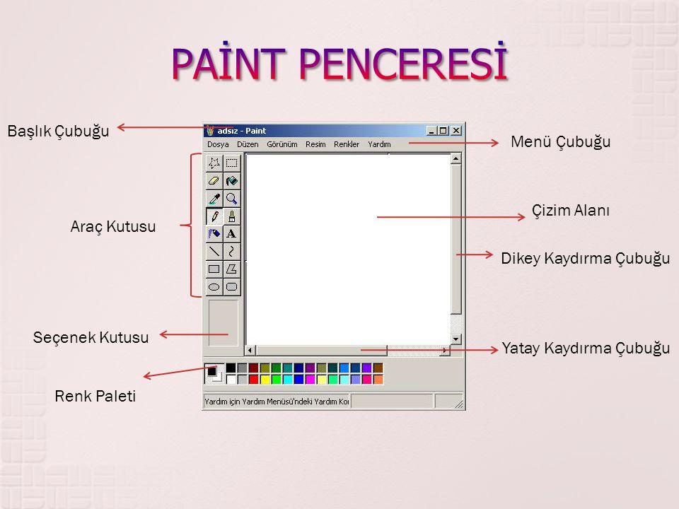 Başlık Çubuğu Menü Çubuğu Çizim Alanı Dikey Kaydırma Çubuğu Yatay Kaydırma Çubuğu Renk Paleti Seçenek Kutusu Araç Kutusu