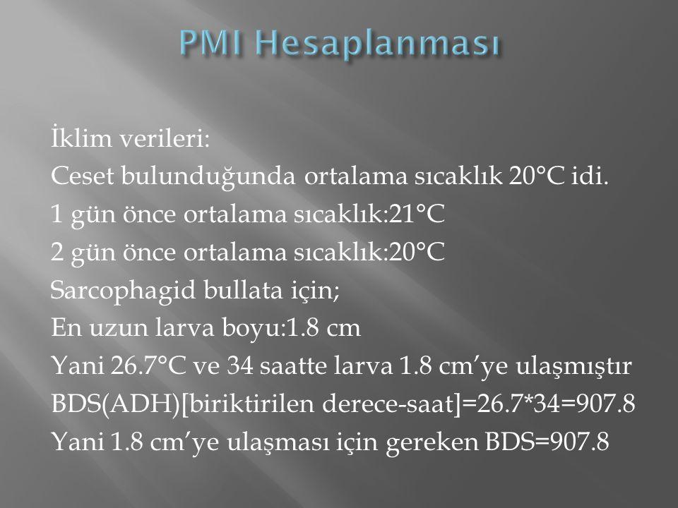İklim verileri: Ceset bulunduğunda ortalama sıcaklık 20°C idi. 1 gün önce ortalama sıcaklık:21°C 2 gün önce ortalama sıcaklık:20°C Sarcophagid bullata