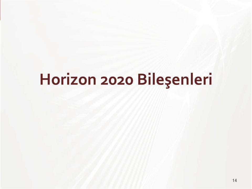 TÜBİTAK Horizon 2020 Bileşenleri 14