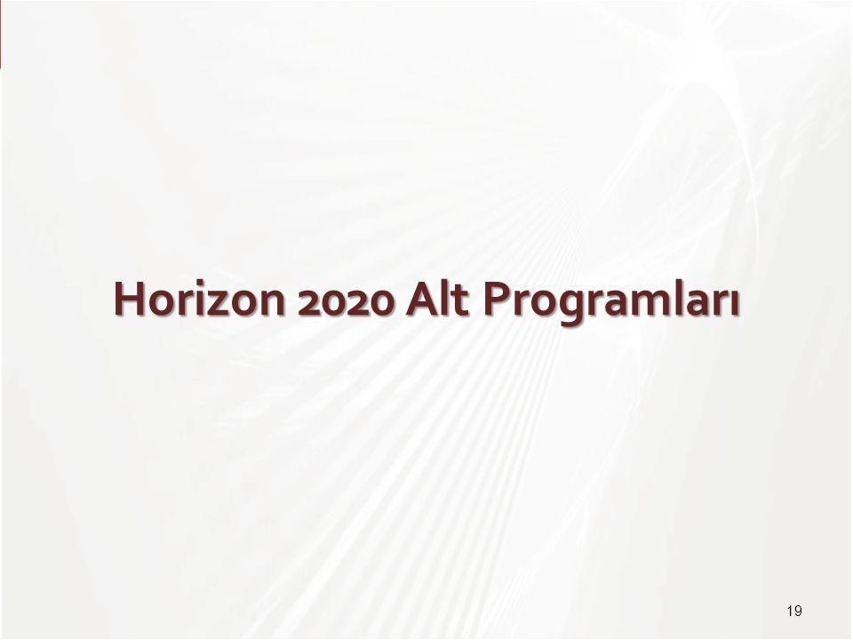 TÜBİTAK Horizon 2020 Alt Programları 19