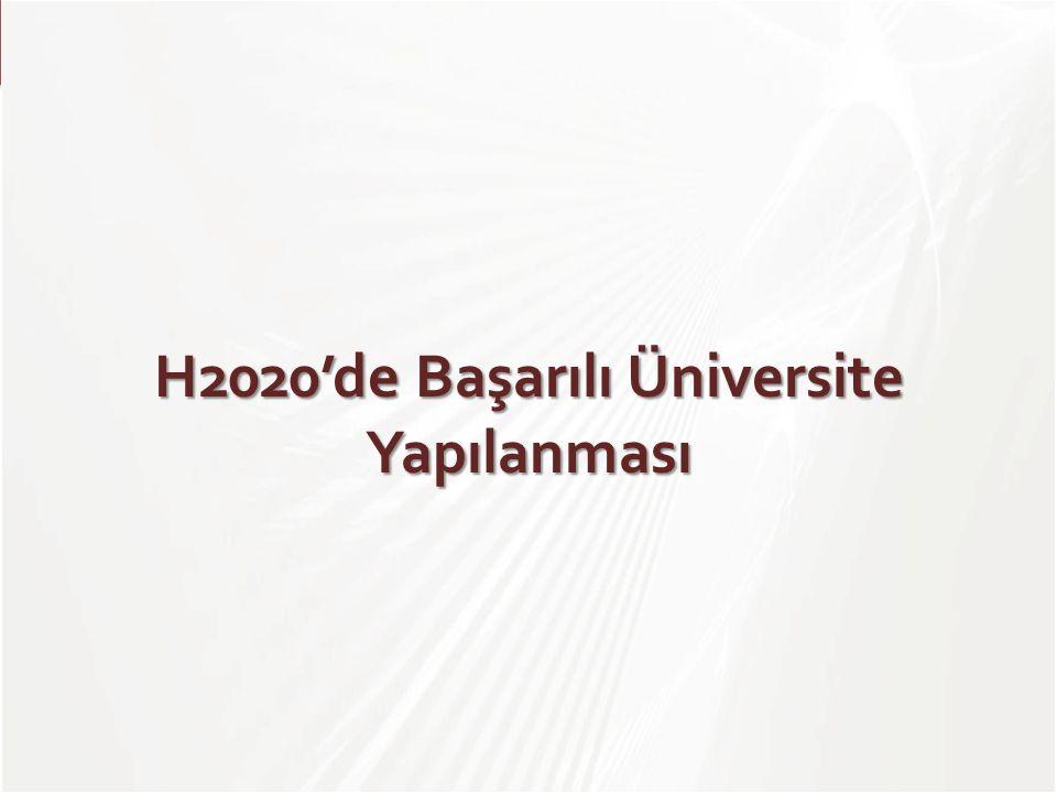 TÜBİTAK H2020'de Başarılı Üniversite Yapılanması