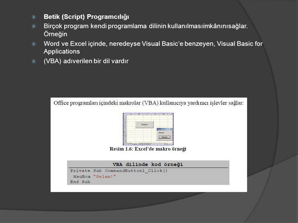  Betik (Script) Programcılığı  Birçok program kendi programlama dilinin kullanılmasıimkânınısağlar. Örneğin  Word ve Excel içinde, neredeyse Visual
