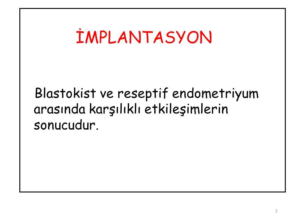 Blastokist ve reseptif endometriyum arasında karşılıklı etkileşimlerin sonucudur. 3 İMPLANTASYON