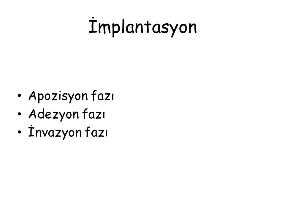 İmplantasyon • Apozisyon fazı • Adezyon fazı • İnvazyon fazı