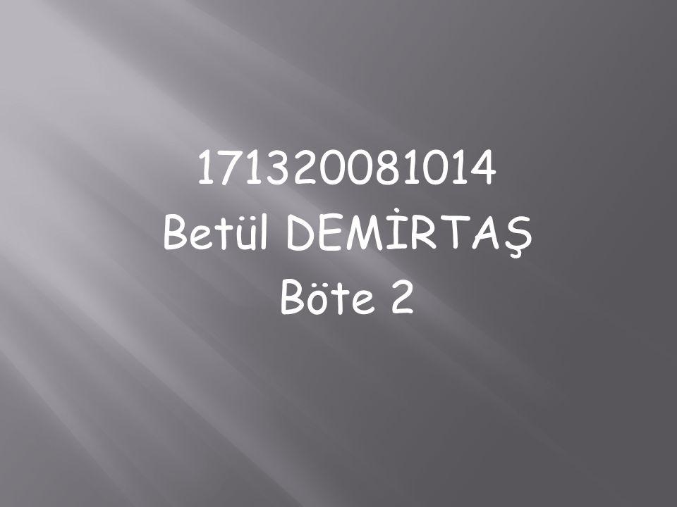 171320081014 Betül DEMİRTAŞ Böte 2