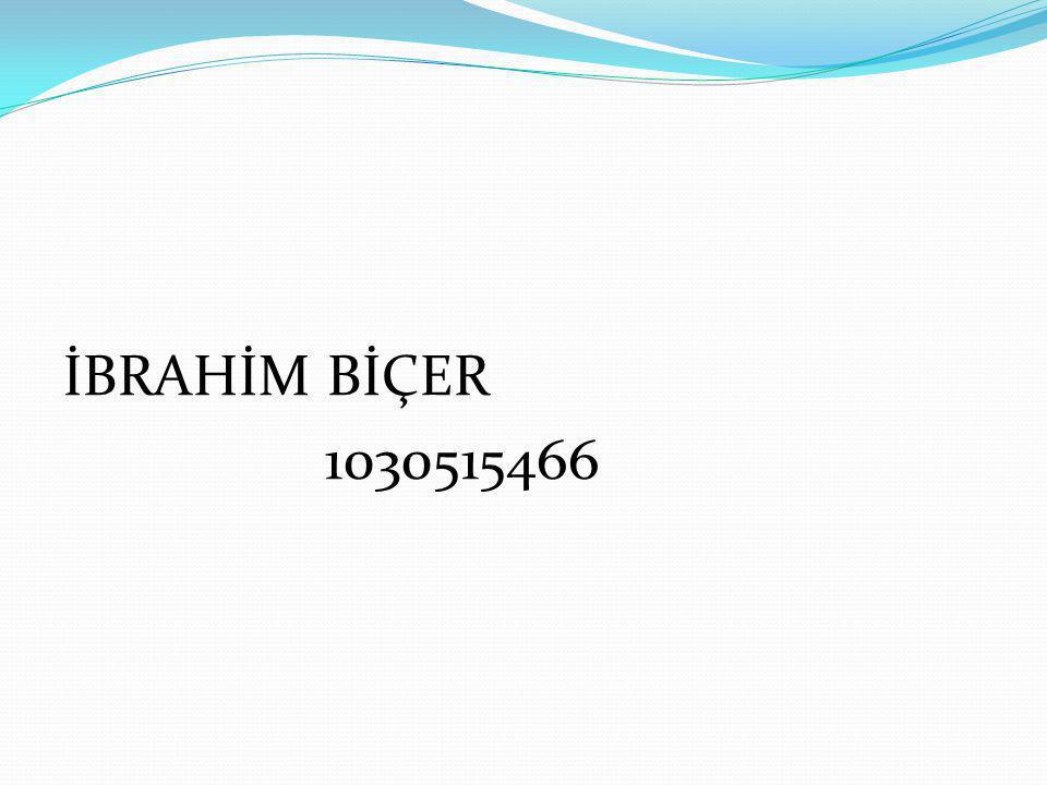 İBRAHİM BİÇER 1030515466