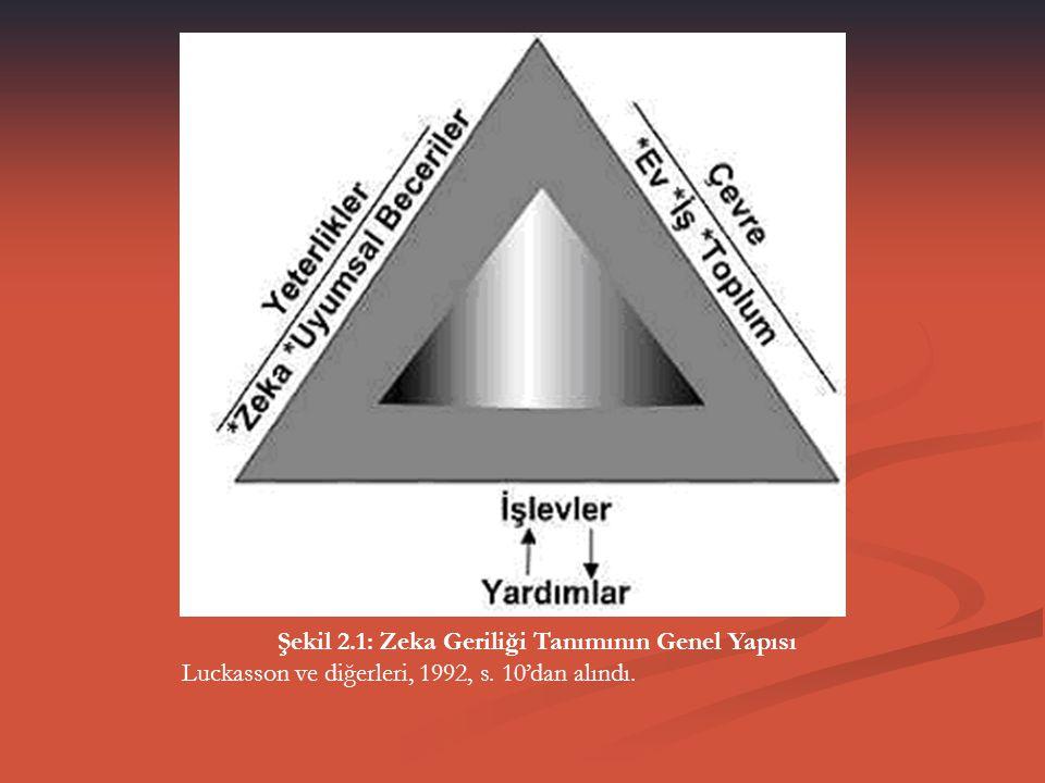 Şekil 2.1: Zeka Geriliği Tanımının Genel Yapısı Luckasson ve diğerleri, 1992, s. 10'dan alındı.