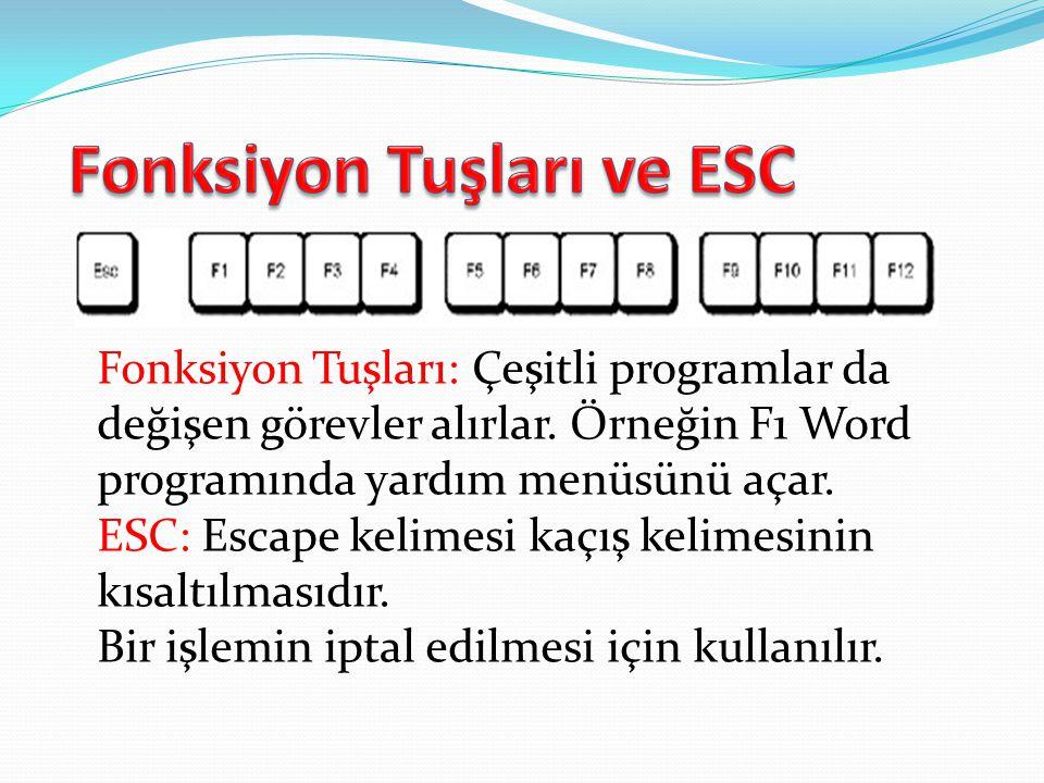 Fonksiyon Tuşları: Çeşitli programlar da değişen görevler alırlar. Örneğin F1 Word programında yardım menüsünü açar. ESC: Escape kelimesi kaçış kelime