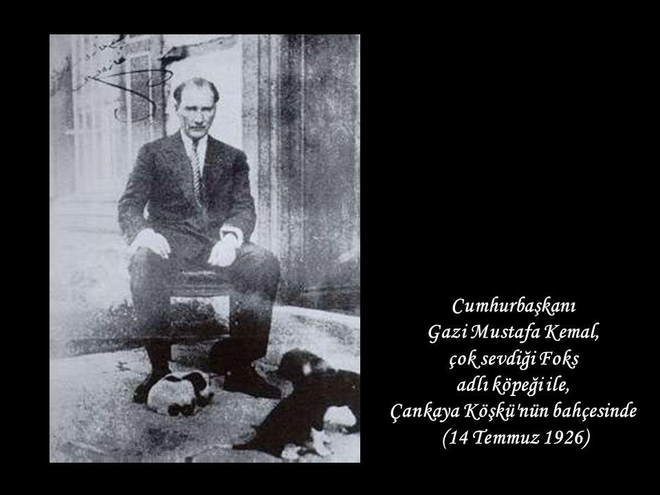 Cumhurbaşkanı Gazi Mustafa Kemal, çok sevdiği Foks adlı köpeği ile, Çankaya Köşkü nün bahçesinde (14 Temmuz 1926)