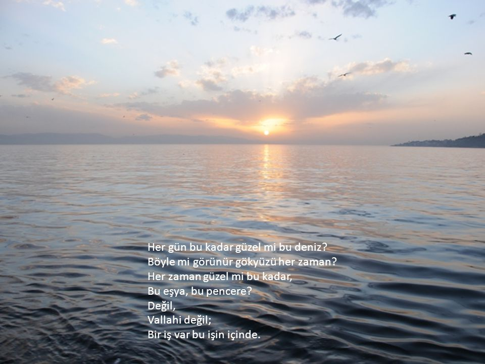Yosun kokusu Ve sahile çekilmiş dalyan direkleri Sahilde yaşayan çocuklara Hiçbir şey hatırlatmaz.