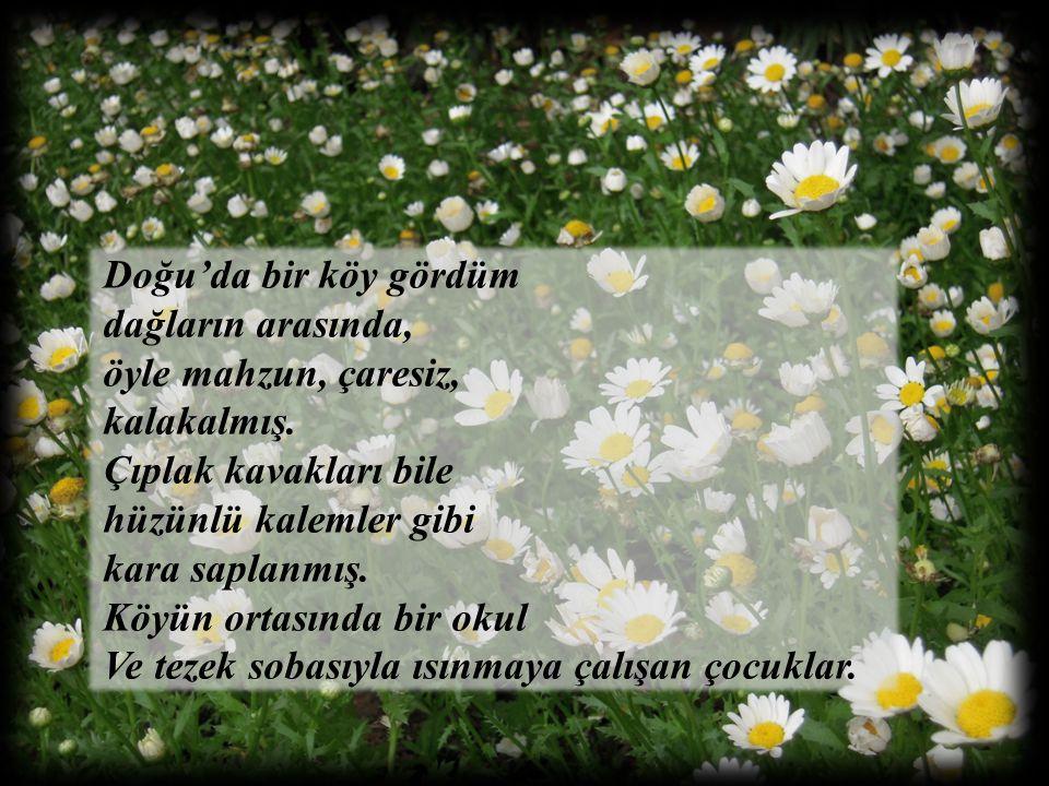 Mayıs'ın on dokuzuydu… Okul töreninde bir kardelen, Mustafa Kemal'in kızına yazılmış, Livaneli dizelerini okurken, göz pınarları dopdoluydu.