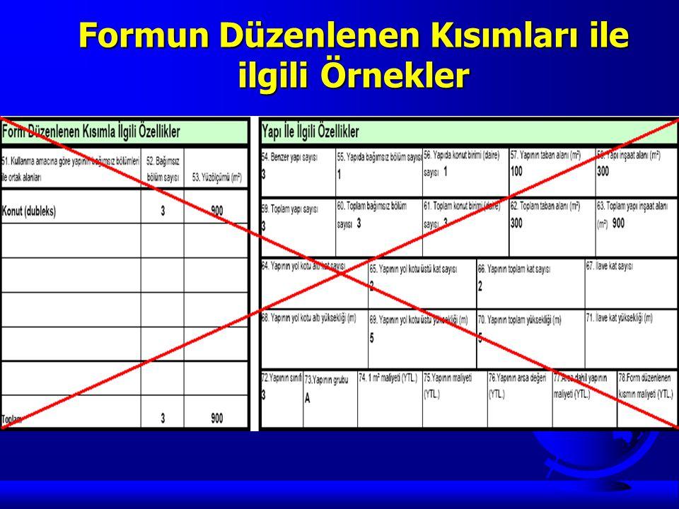 Formun Düzenlenen Kısımları ile ilgili Örnekler Örnek 3: