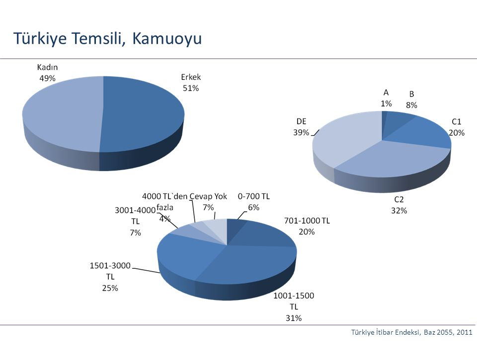 Türkiye Temsili, Kamuoyu Türkiye İtibar Endeksi, Baz 2055, 2011