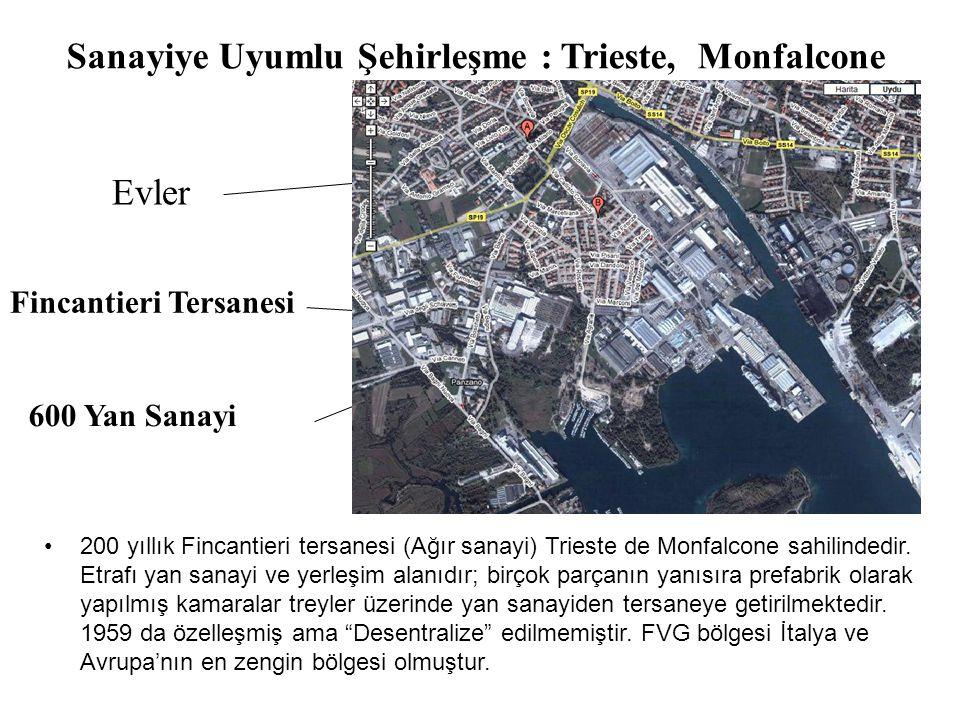 Fincantieri Tersanesi •200 yıllık Fincantieri tersanesi (Ağır sanayi) Trieste de Monfalcone sahilindedir.