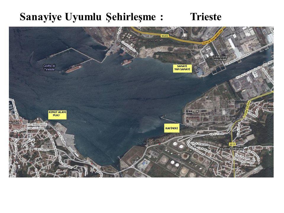 Sanayiye Uyumlu Şehirleşme : Trieste