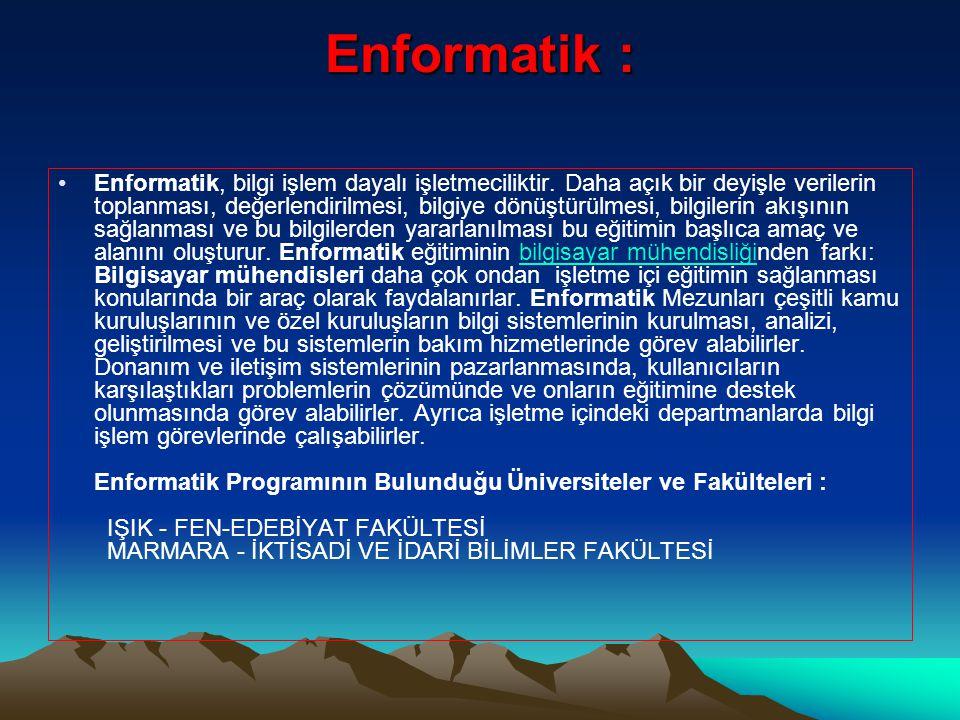 Enformatik : •Enformatik, bilgi işlem dayalı işletmeciliktir.