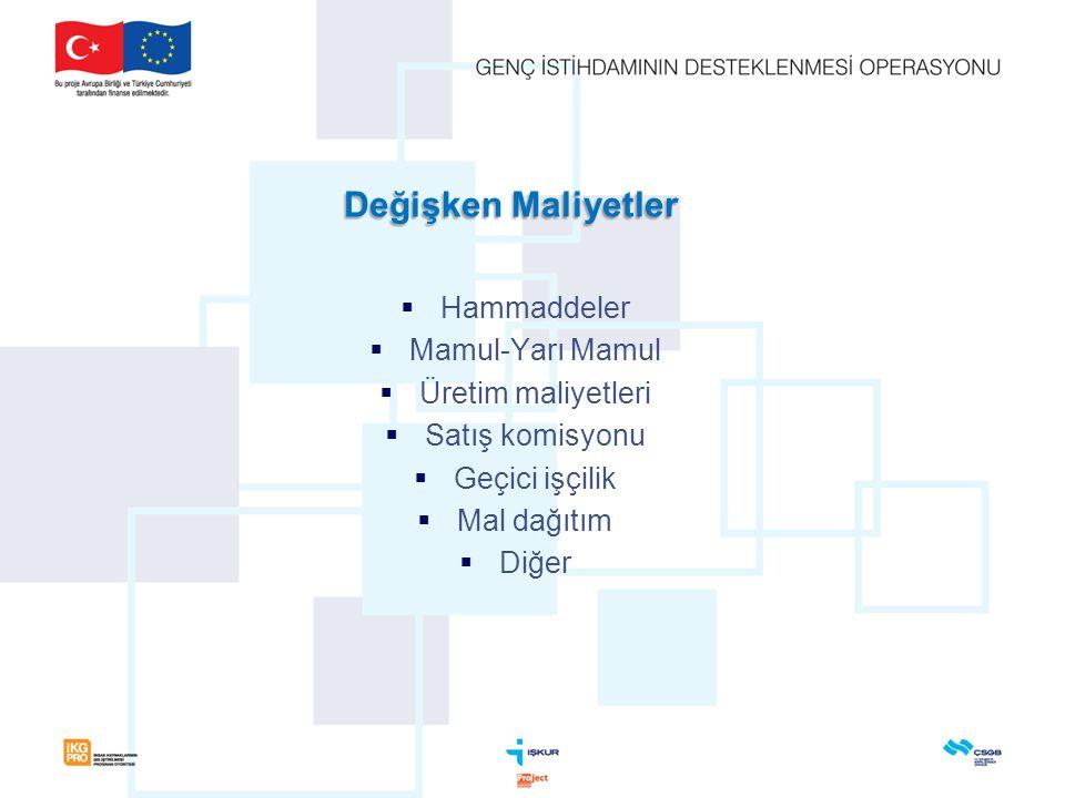 Değişken Maliyetler  Hammaddeler  Mamul-Yarı Mamul  Üretim maliyetleri  Satış komisyonu  Geçici işçilik  Mal dağıtım  Diğer