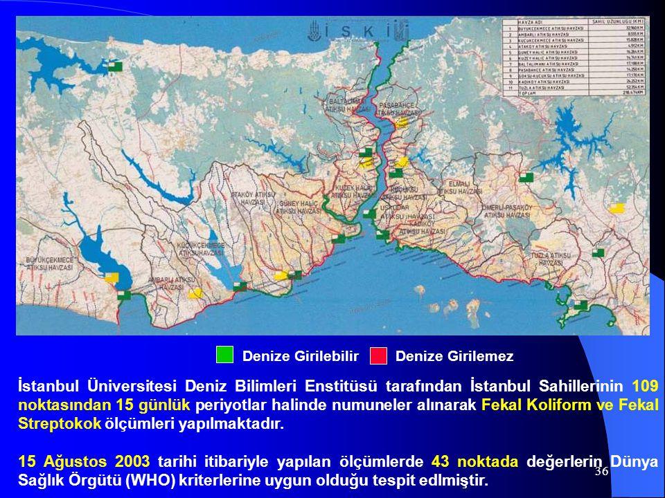 36 İstanbul Üniversitesi Deniz Bilimleri Enstitüsü tarafından İstanbul Sahillerinin 109 noktasından 15 günlük periyotlar halinde numuneler alınarak Fe