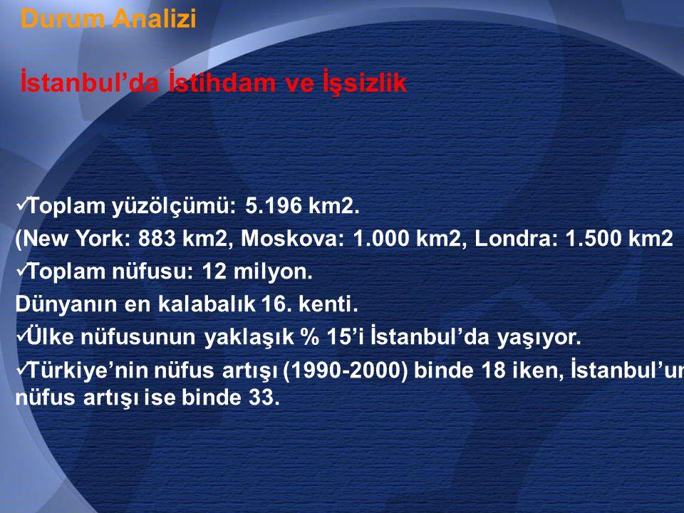 13 Durum Analizi İstanbul'da İstihdam ve İşsizlik  Toplam yüzölçümü: 5.196 km2.