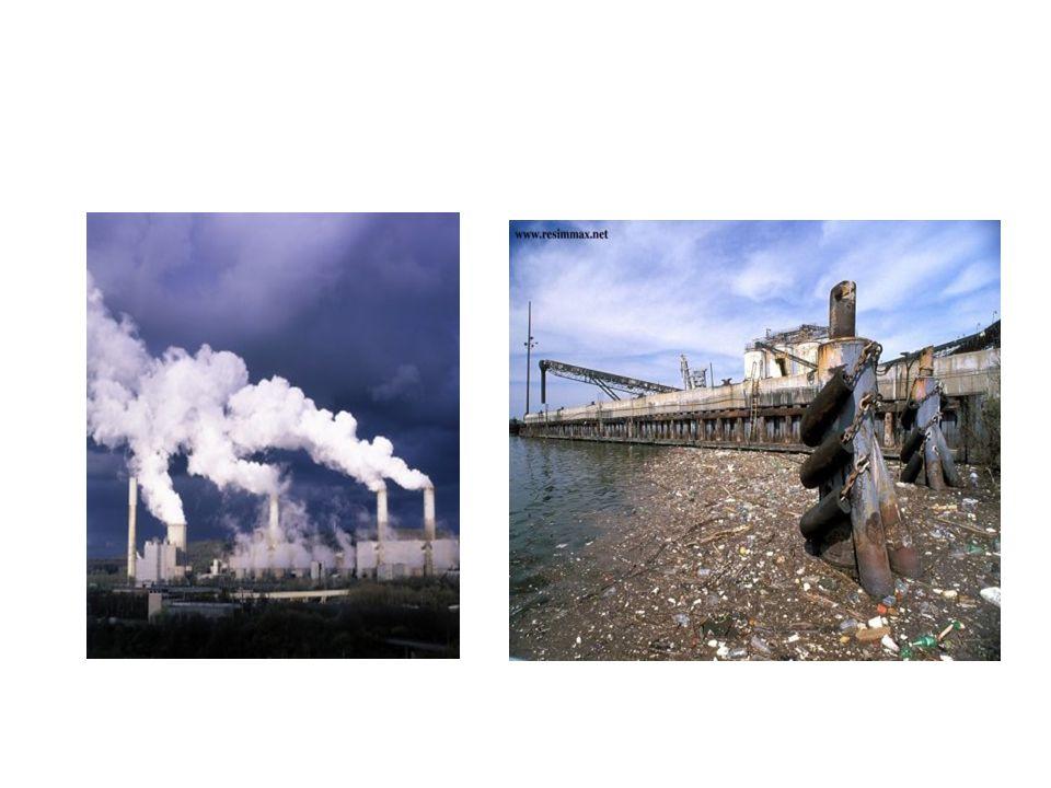 •Çevre kirliligi nedir?