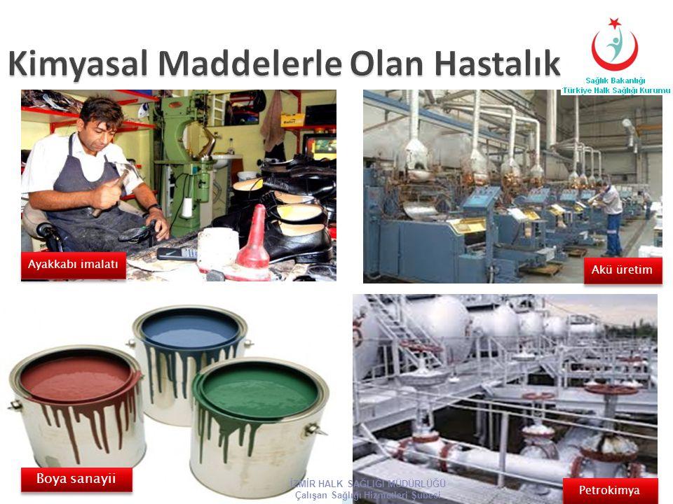 Ayakkabı imalatı Boya sanayii Akü üretim Petrokimya İZMİR HALK SAĞLIĞI MÜDÜRLÜĞÜ Çalışan Sağlığı Hizmetleri Şubesi