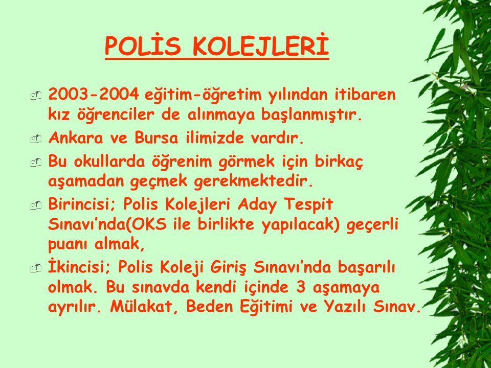 POLİS KOLEJLERİ  2003-2004 eğitim-öğretim yılından itibaren kız öğrenciler de alınmaya başlanmıştır.  Ankara ve Bursa ilimizde vardır.  Bu okullard