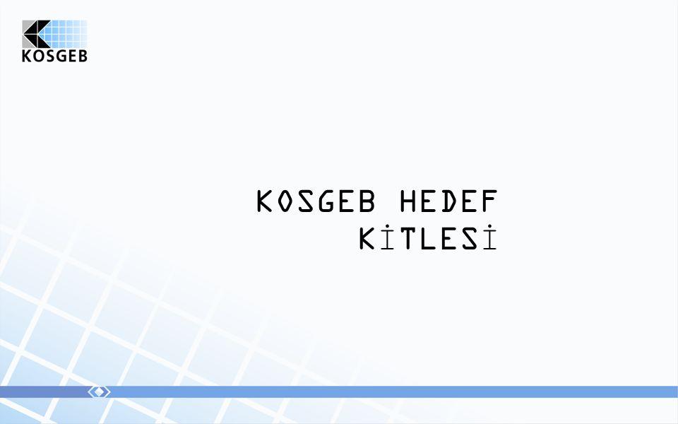 KOSGEB HEDEF KİTLESİ