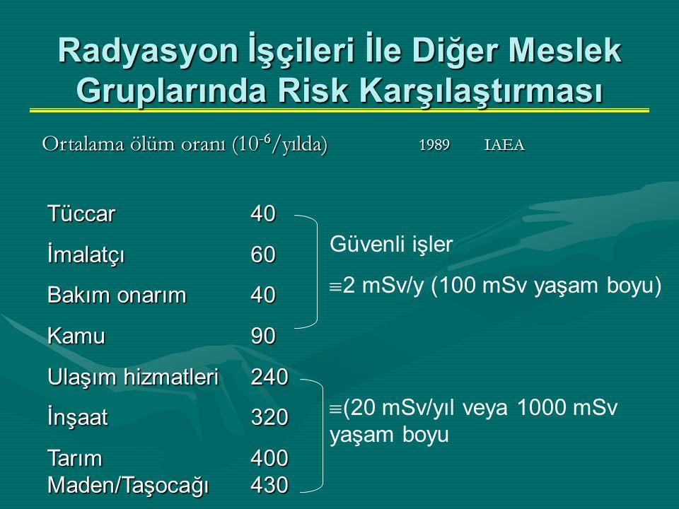 Radyasyon İşçileri İle Diğer Meslek Gruplarında Risk Karşılaştırması Tüccar 40 İmalatçı60 Bakım onarım40 Kamu 90 Ulaşım hizmatleri240 İnşaat 320 Tarım