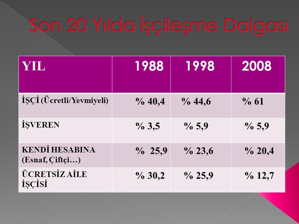 YIL TARIM SANAYİ İNŞAATHİZMETLER 1988 % 46,5 % 15,8 % 5,7 % 32 1998 % 41,5 % 17 % 6,1 % 35,3 2008 % 23,7 % 20,9 % 5,9 % 49,5