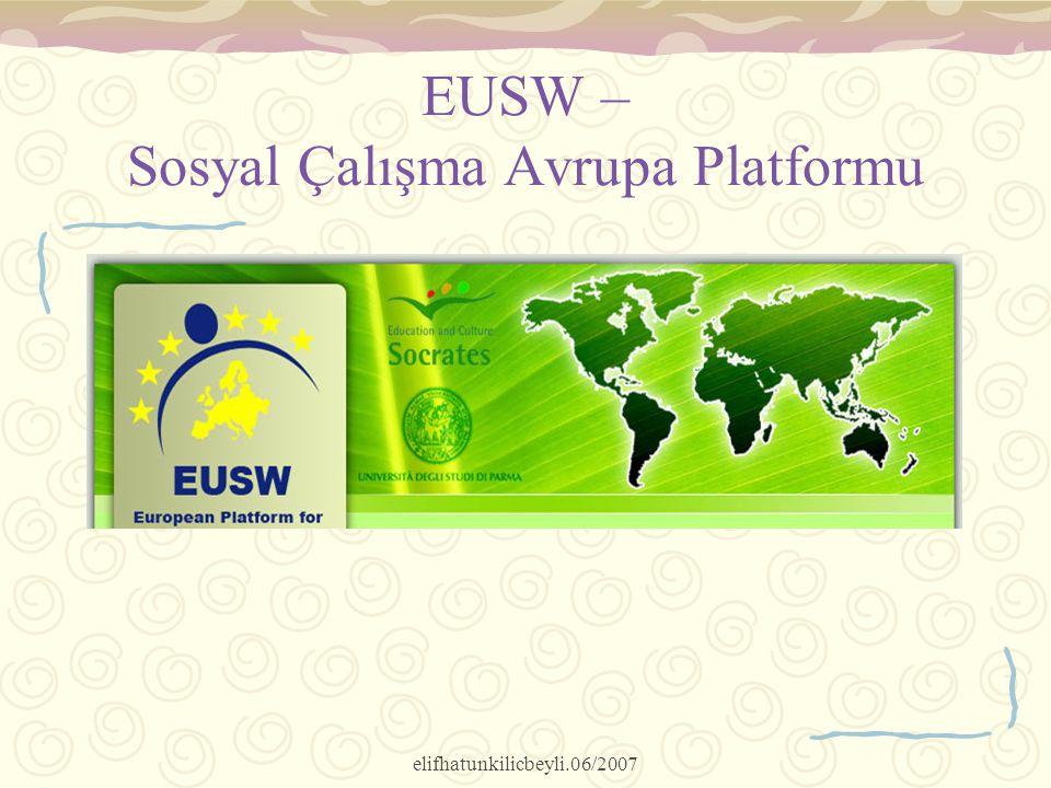 elifhatunkilicbeyli.06/2007 EUSW – Sosyal Çalışma Avrupa Platformu