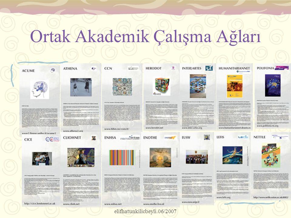 elifhatunkilicbeyli.06/2007 Ortak Akademik Çalışma Ağları Exhibit