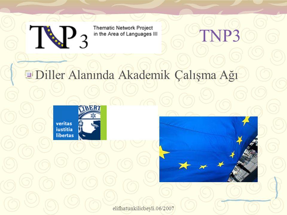 elifhatunkilicbeyli.06/2007 TNP3 Diller Alanında Akademik Çalışma Ağı