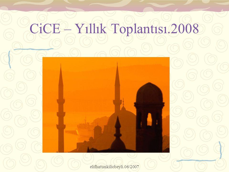 elifhatunkilicbeyli.06/2007 CiCE – Yıllık Toplantısı.2008