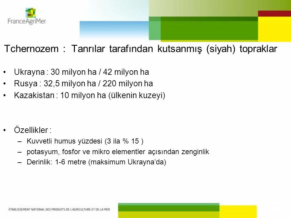 Tchernozem : Tanrılar tarafından kutsanmış (siyah) topraklar •Ukrayna : 30 milyon ha / 42 milyon ha •Rusya : 32,5 milyon ha / 220 milyon ha •Kazakista
